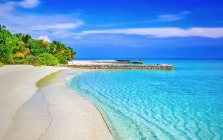 pexels-photo-248797-beachpacifica