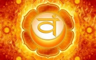 Svadhisthana) – Chakra Esplênico