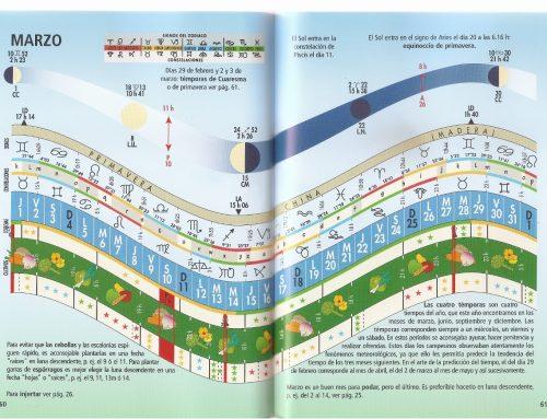 Ciclos de la Tierra: visión holística, Permacultura… cómo yo la vivo.