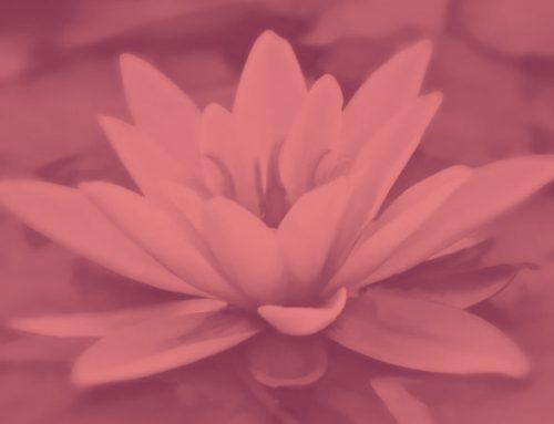 Auto Test de los Chakras: ¿Estás buscando el equilibrio?¿Estar mejor contigo misma?